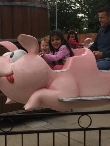 Driving a pig
